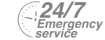 24/7 Emergency Service Pest Control in Seven Kings, Goodmayes, IG3. Call Now! 020 8166 9746